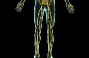 Симптомы защемления нерва в грудном отделе позвоночника