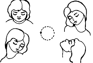 Упражнения при кифозе грудного отдела позвоночника