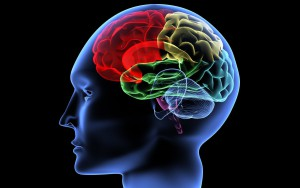 Мозговое кровообращение при шейном остеохондрозе