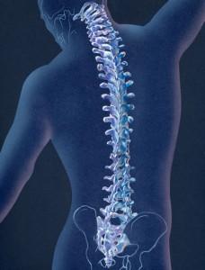 Симптомы корешкового синдрома при остеохондрозе