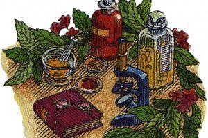 Народная медицина при защемлении грыжи
