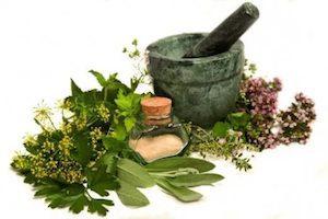 Лечение остеохондроза травами