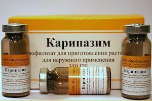 Карипазим в лечении межпозвоночной грыжи