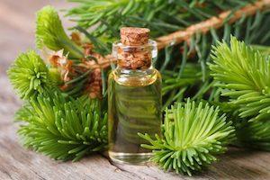 Пихтовое масло: применение при остеохондрозе
