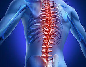 Почему важно беречь спину