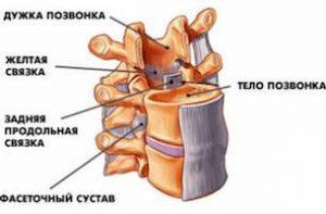 Воспаление желтых связок позвоночника лечение: как проявляется, классификация, профилактика, рецепты